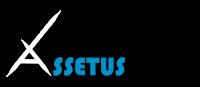 Logo assetus