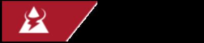 Logo t bull