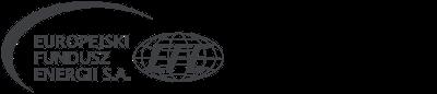 Logo efe